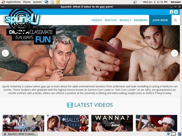 Spunku Free Online