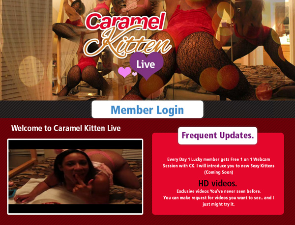 Caramel Kitten Live With Free Trial