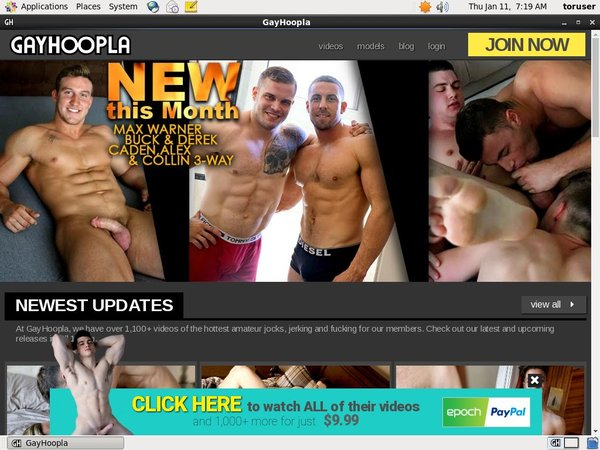 Gay Hoopla Membership Plan
