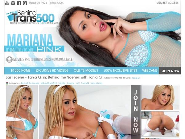 Behind Trans 500 Videos Free